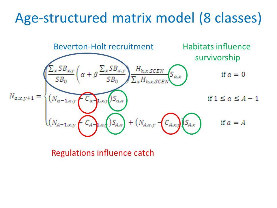 Age-structured matrix model (8 classes) Beverton-Holt recruitmentHabitats influence survivorship Regulations influence catch