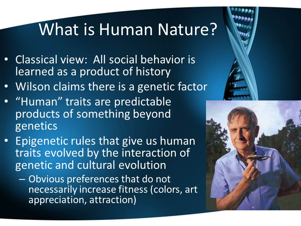 "What is Human Nature? Classical view: All social behavior is learned as a product of history Wilson claims there is a genetic factor ""Human"" traits ar"