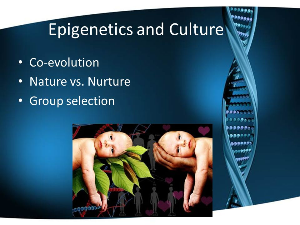 Epigenetics and Culture Co-evolution Nature vs. Nurture Group selection