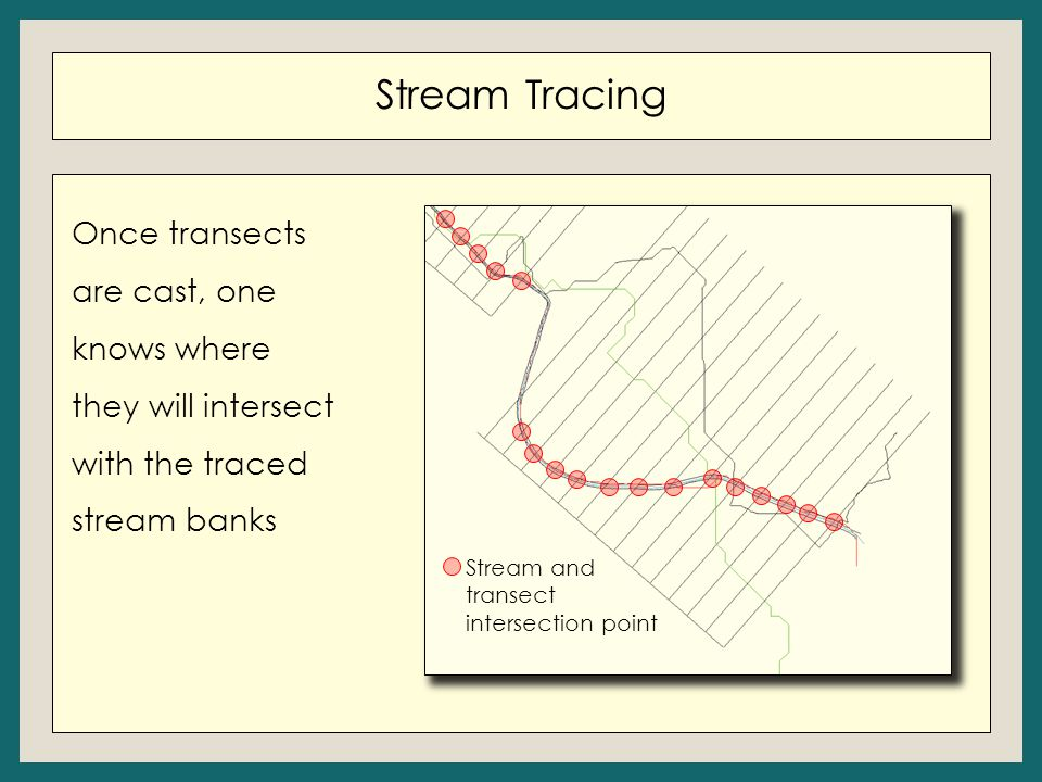 Stream Tracing Once transects are cast, one knows where they will intersect with the traced stream banks Stream and transect intersection point