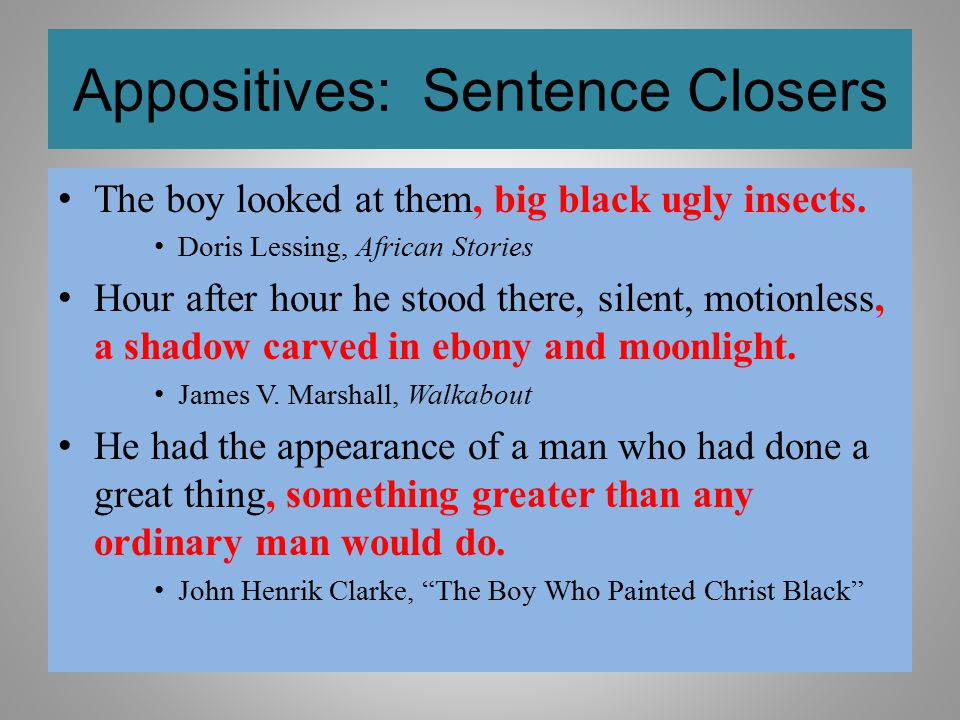 Appositives: Sentence Closers The boy looked at them, big black ugly insects. Doris Lessing, African Stories Hour after hour he stood there, silent, m