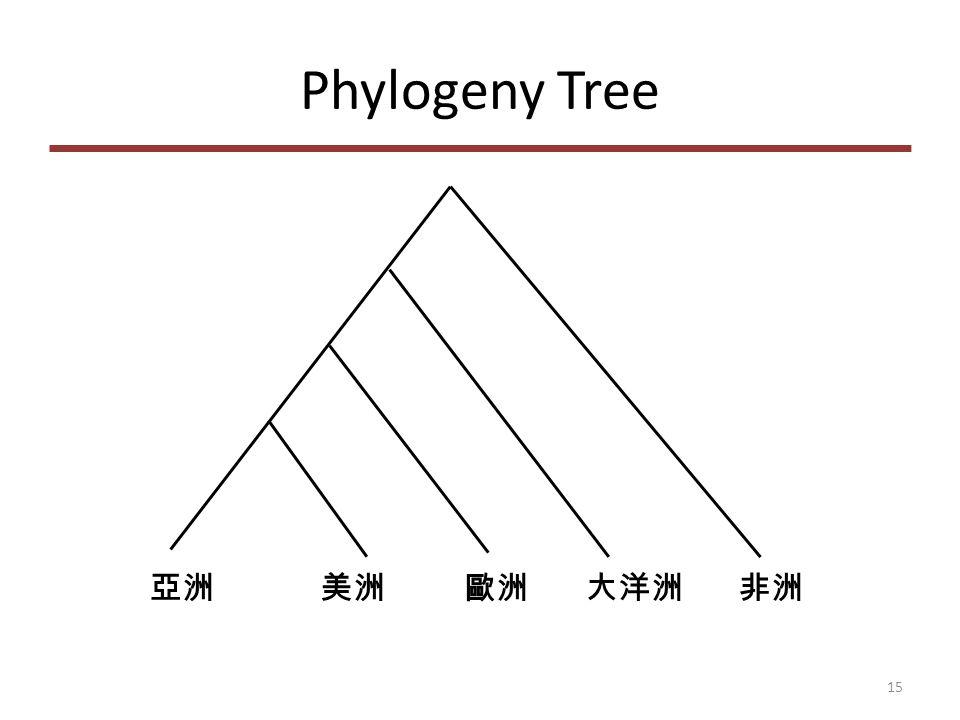 Phylogeny Tree 亞洲 美洲 歐洲 大洋洲 非洲 15