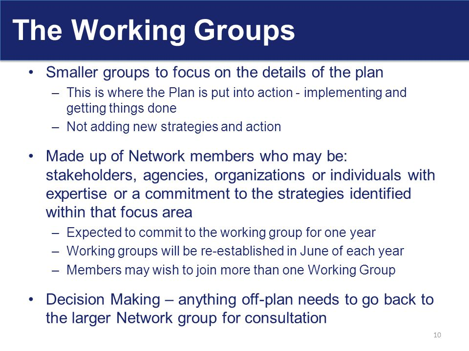 The Working Groups Smaller groups to focus on the details of the plan –This is where the Plan is put into action - implementing and getting things don