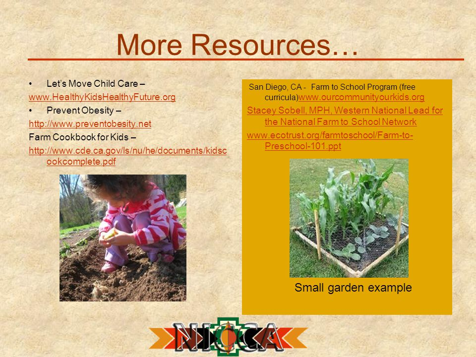 More Resources… Let's Move Child Care – www.HealthyKidsHealthyFuture.org Prevent Obesity – http://www.preventobesity.net Farm Cookbook for Kids – http://www.cde.ca.gov/ls/nu/he/documents/kidsc ookcomplete.pdf San Diego, CA - Farm to School Program (free curricula) www.ourcommunityourkids.org www.ourcommunityourkids.org Stacey Sobell, MPH, Western National Lead for the National Farm to School Network www.ecotrust.org/farmtoschool/Farm-to- Preschool-101.ppt Small garden example