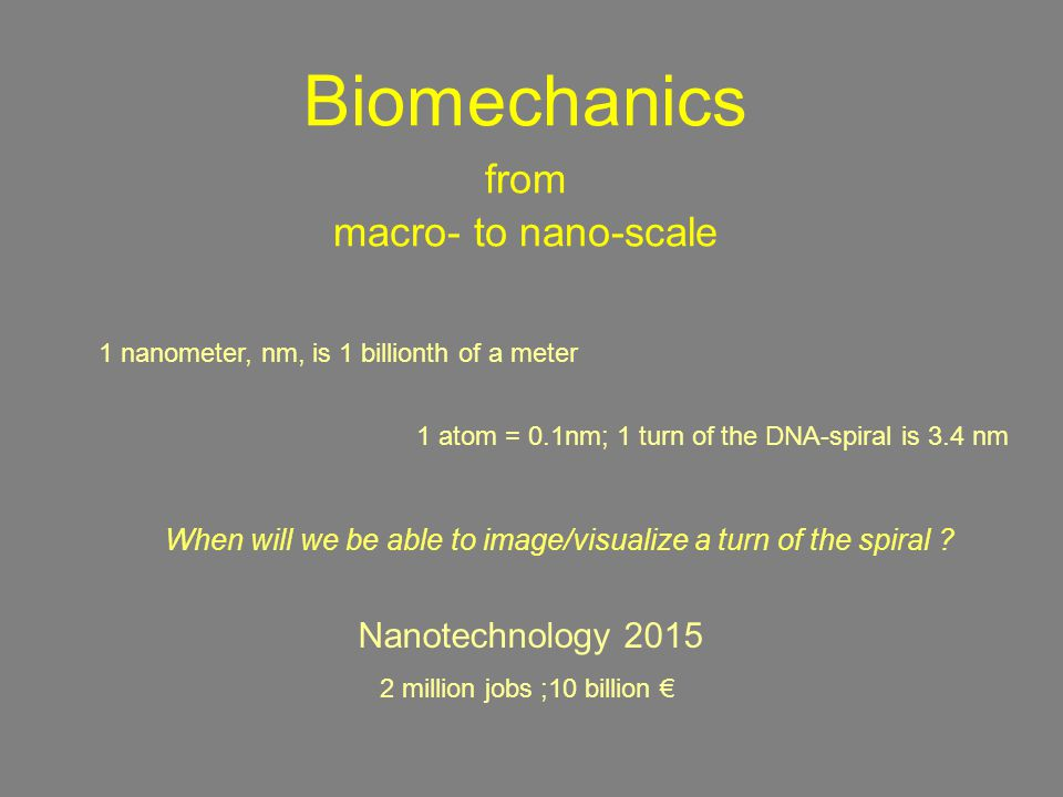 Biomechanics from macro- to nano-scale When will we be able to image/visualize a turn of the spiral .