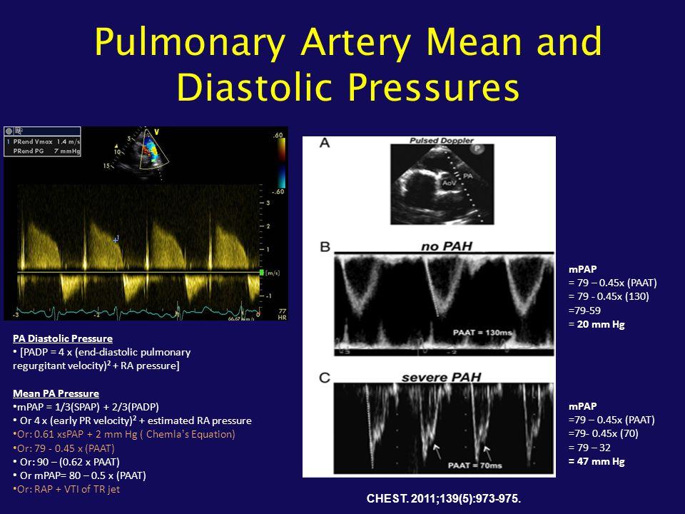 Pulmonary Artery Mean and Diastolic Pressures PA Diastolic Pressure [PADP = 4 x (end-diastolic pulmonary regurgitant velocity)² + RA pressure] Mean PA