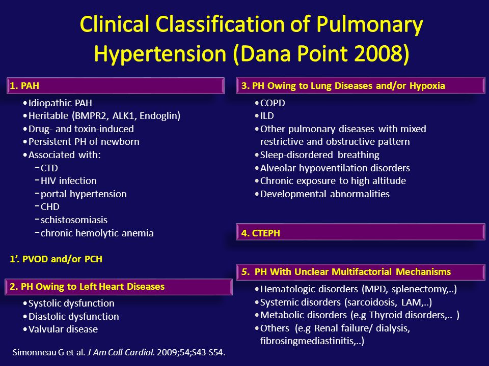 Progression of RV Dysfunction in PAH 15 Champion H C et al. Circulation 2009;120:992-1007