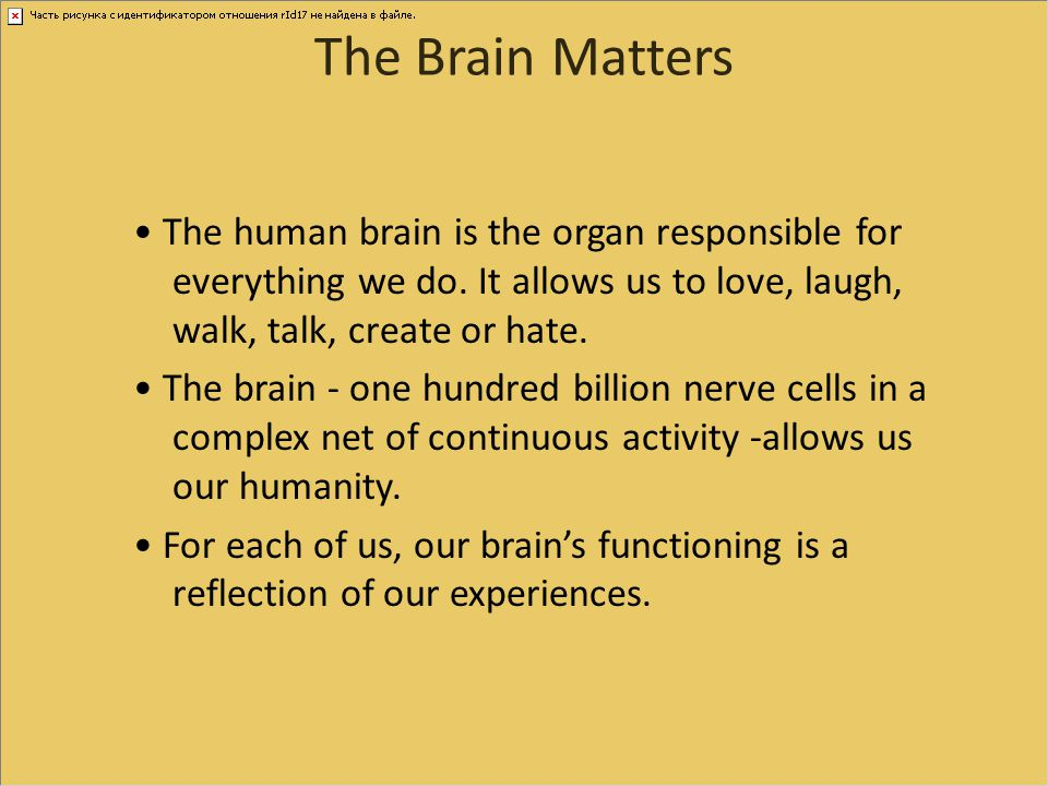 The Brain Matters The human brain is the organ responsible for everything we do. It allows us to love, laugh, walk, talk, create or hate. The brain -