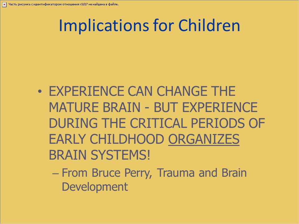 Implications for Children EXPERIENCE CAN CHANGE THE MATURE BRAIN - BUT EXPERIENCE DURING THE CRITICAL PERIODS OF EARLY CHILDHOOD ORGANIZES BRAIN SYSTE