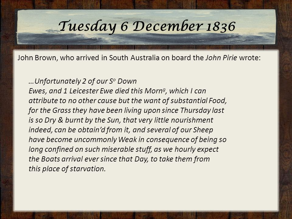 Tuesday 6 December 1836 John Brown, who arrived in South Australia on board the John Pirie wrote: …Unfortunately 2 of our S o Down Ewes, and 1 Leicester Ewe died this Morn g, which I can attribute to no other cause but the want of substantial Food, for the Grass they have been living upon since Thursday last is so Dry & burnt by the Sun, that very little nourishment indeed, can be obtain'd from it, and several of our Sheep have become uncommonly Weak in consequence of being so long confined on such miserable stuff, as we hourly expect the Boats arrival ever since that Day, to take them from this place of starvation.