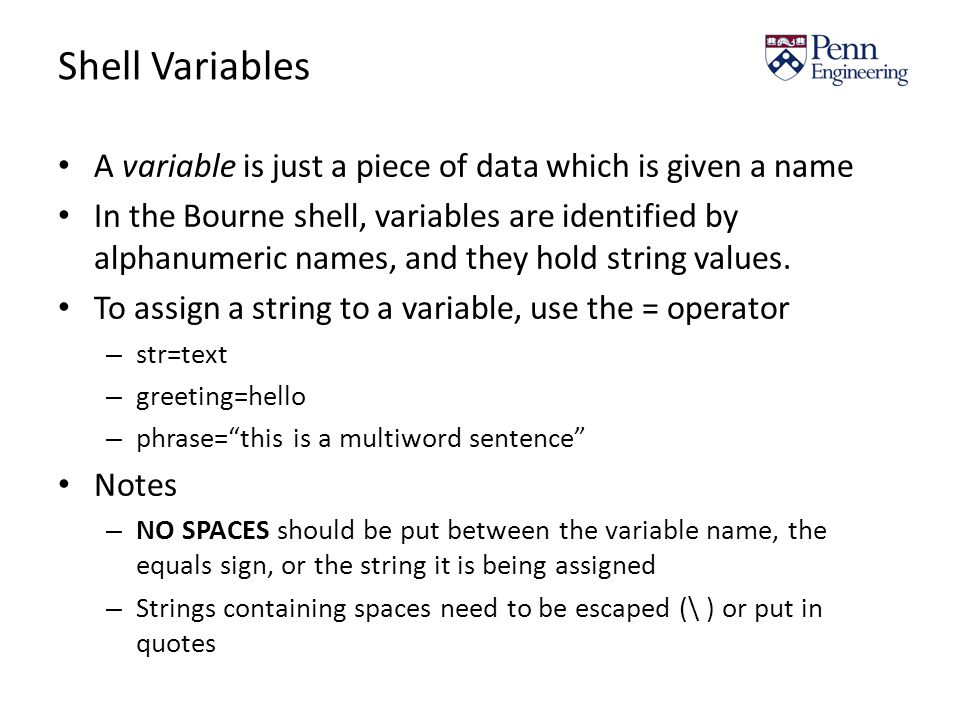 Shell Variables A variable is just a piece of data which is given a name In the Bourne shell, variables are identified by alphanumeric names, and they hold string values.