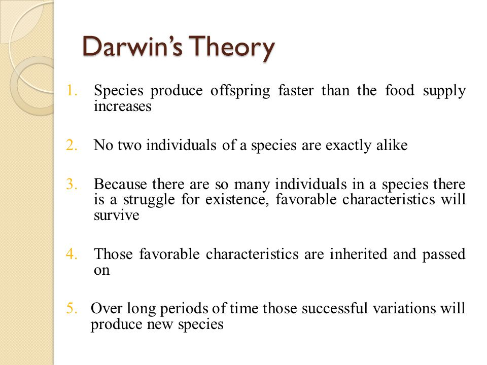 Darwin's Theory 1.Species produce offspring faster than the food supply increases 2.No two individuals of a species are exactly alike 3.Because there are so many individuals in a species there is a struggle for existence, favorable characteristics will survive 4.Those favorable characteristics are inherited and passed on 5.Over long periods of time those successful variations will produce new species