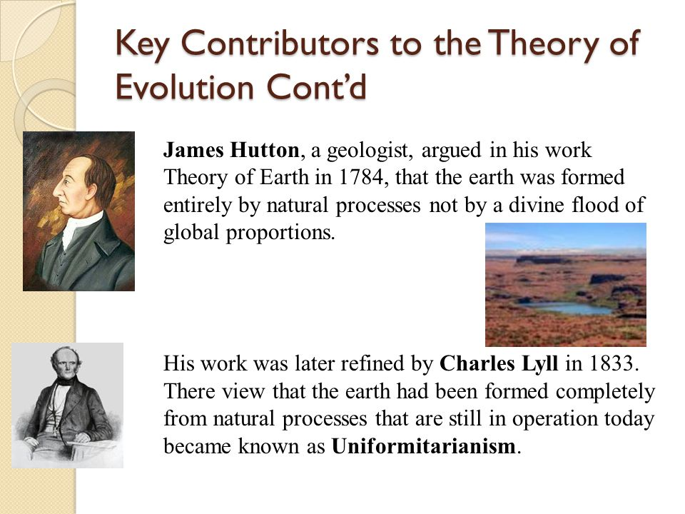 Key Contributors to the Theory of Evolution Cont'd James Hutton, a geologist, argued in his work Theory of Earth in 1784, that the earth was formed entirely by natural processes not by a divine flood of global proportions.