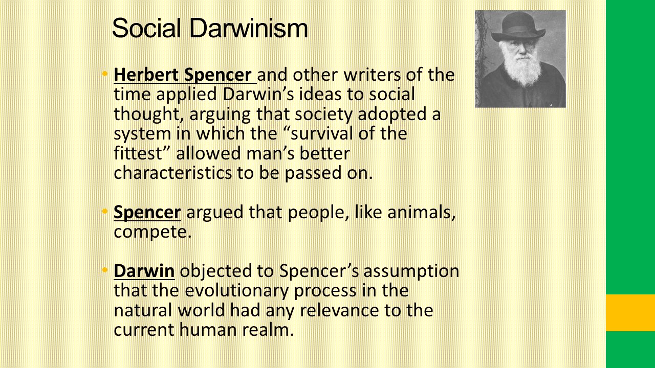 Social Darwinism Herbert Spencer and other writers of the time applied Darwin's ideas to social thought, arguing that society adopted a system in which the survival of the fittest allowed man's better characteristics to be passed on.