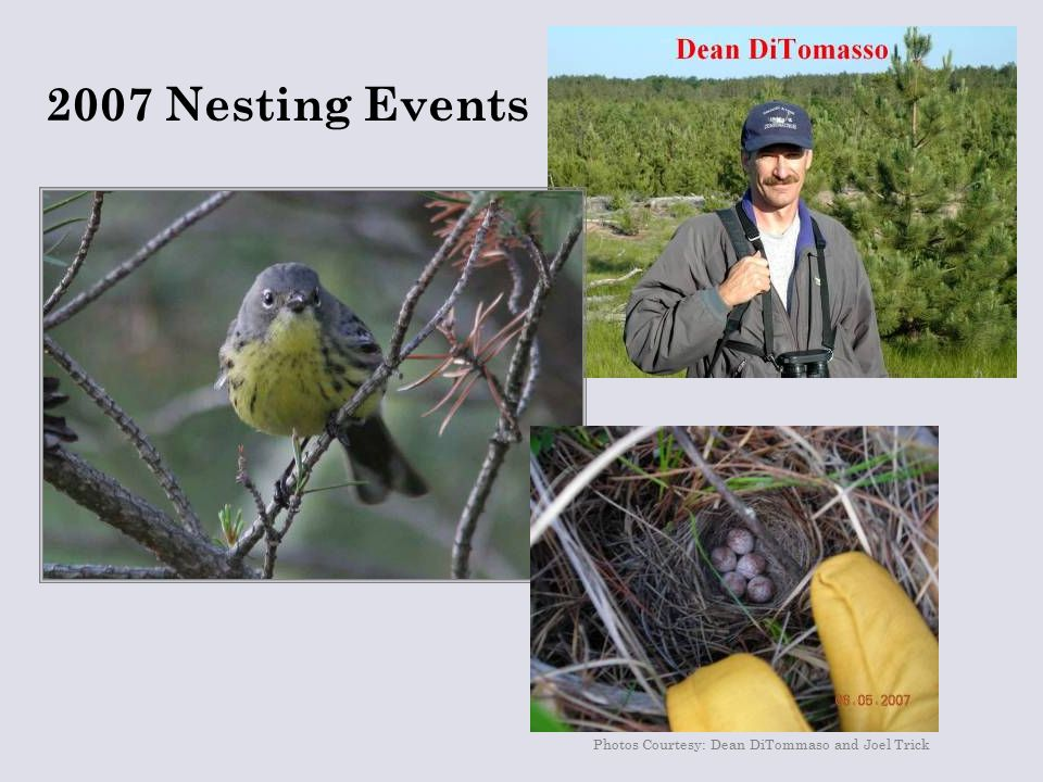 Photos Courtesy: Dean DiTommaso and Joel Trick 2007 Nesting Events