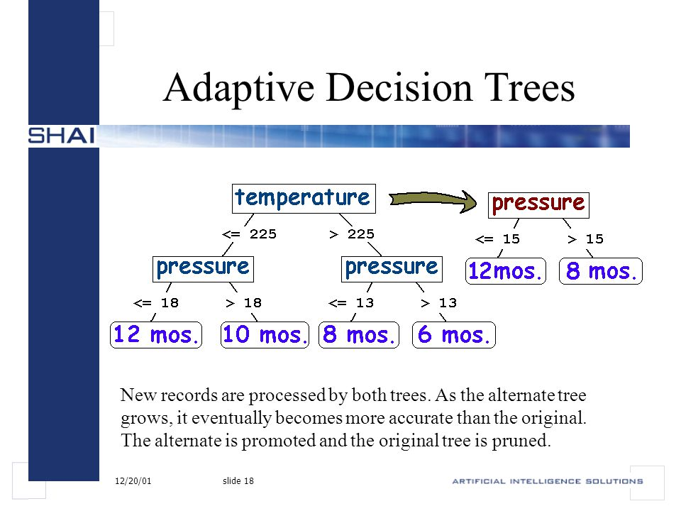 12/20/01slide 18 Adaptive Decision Trees New records are processed by both trees.