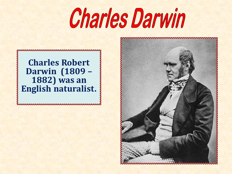 Charles Robert Darwin (1809 – 1882) was an English naturalist.