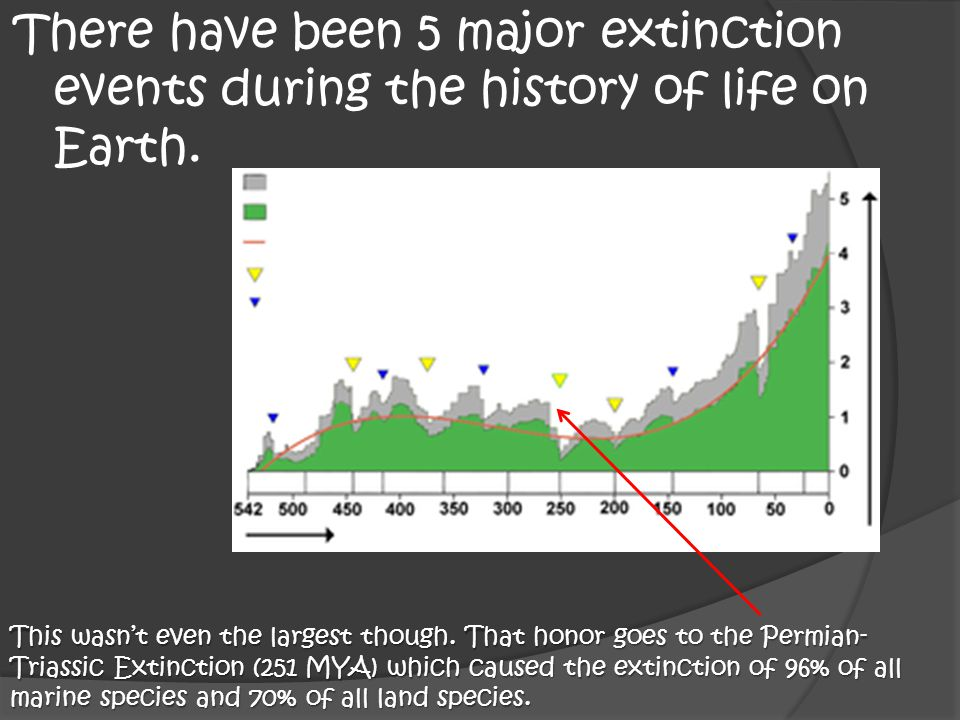There have been 5 major extinction events during the history of life on Earth. This wasn't even the largest though. That honor goes to the Permian- Tr