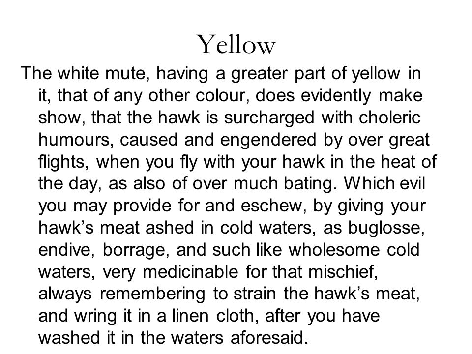 Yellow The white mute, having a greater part of yellow in it, that of any other colour, does evidently make show, that the hawk is surcharged with choleric humours, caused and engendered by over great flights, when you fly with your hawk in the heat of the day, as also of over much bating.