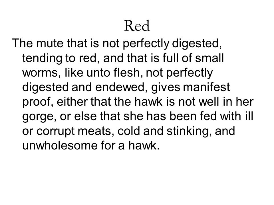 Red The mute that is not perfectly digested, tending to red, and that is full of small worms, like unto flesh, not perfectly digested and endewed, gives manifest proof, either that the hawk is not well in her gorge, or else that she has been fed with ill or corrupt meats, cold and stinking, and unwholesome for a hawk.
