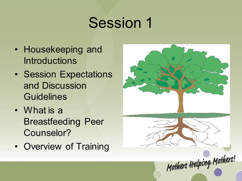 Session 1 Housekeeping and Introductions Session Expectations and Discussion Guidelines What is a Breastfeeding Peer Counselor.