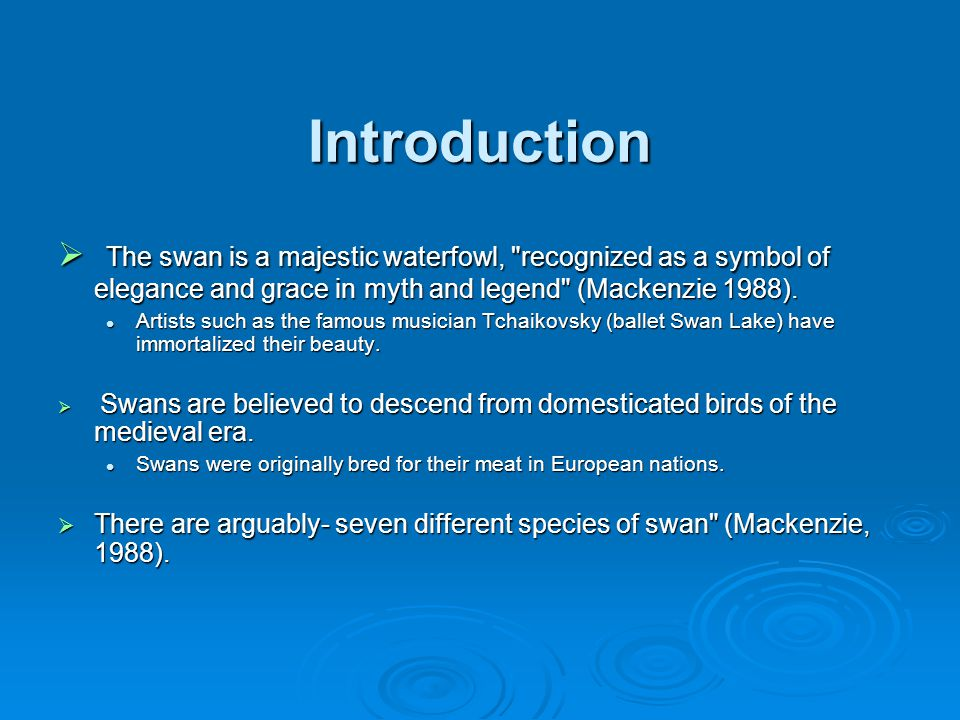 Introduction  The swan is a majestic waterfowl, recognized as a symbol of elegance and grace in myth and legend (Mackenzie 1988).