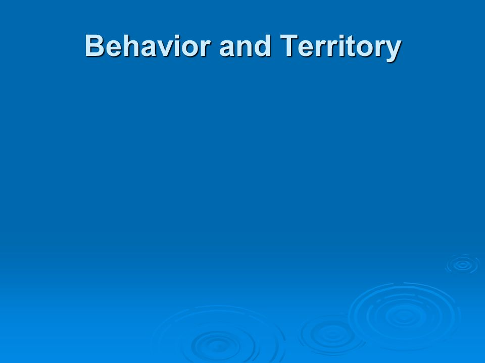 Behavior and Territory