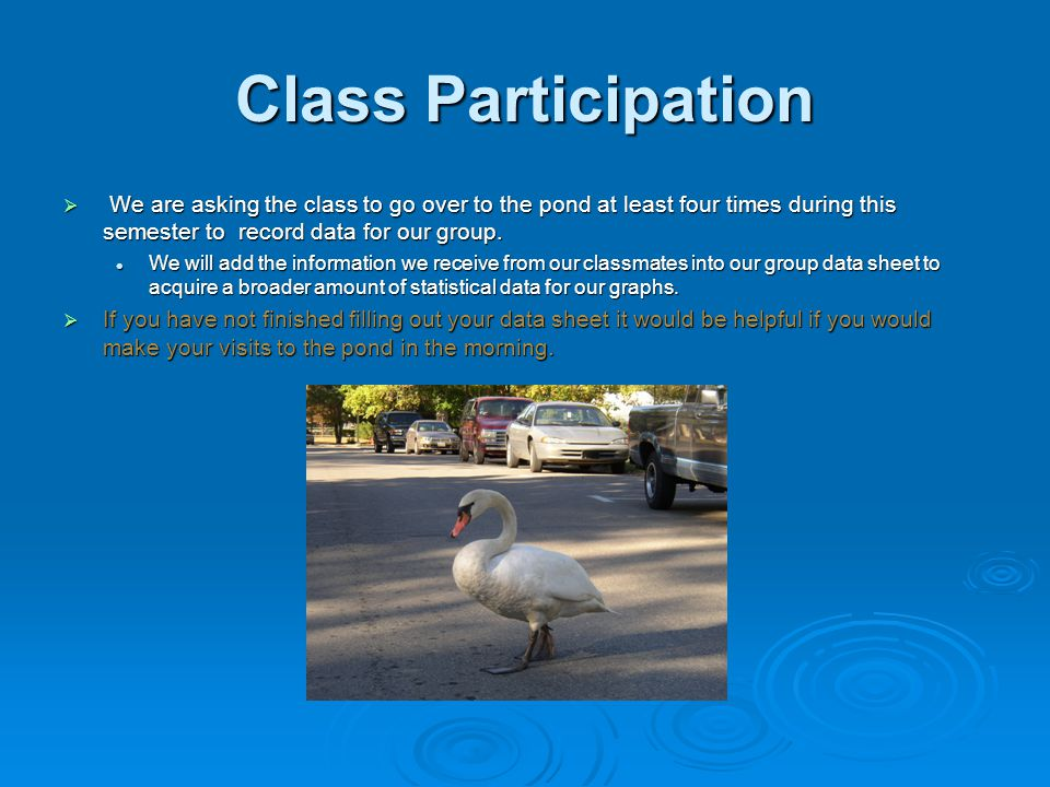 Class Participation  We are asking the class to go over to the pond at least four times during this semester to record data for our group.