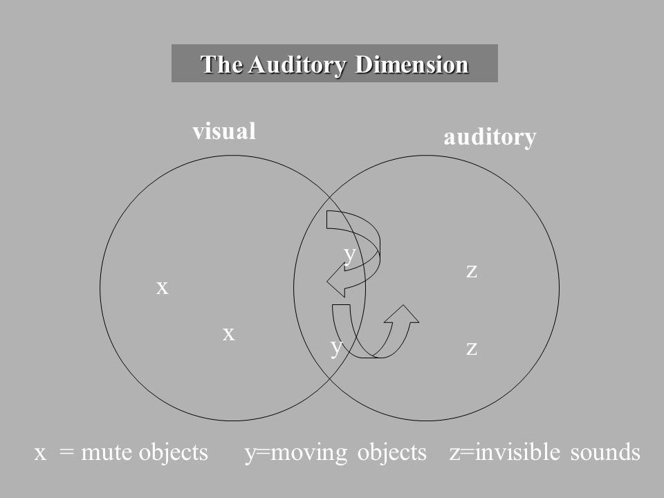 The Auditory Dimension visual auditory xxxx y z zz z x = mute objects y=moving objects z=invisible sounds