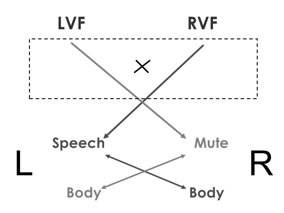Speech Mute Body LR LVF RVF