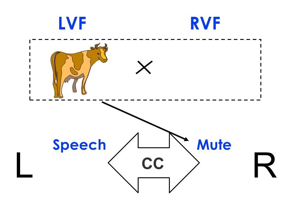 Speech Mute LR CC LVF RVF