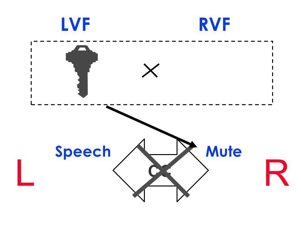 CC Speech Mute LR LVF RVF