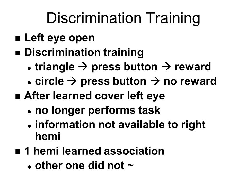 Discrimination Training n Left eye open n Discrimination training l triangle  press button  reward l circle  press button  no reward n After learned cover left eye l no longer performs task l information not available to right hemi n 1 hemi learned association l other one did not ~