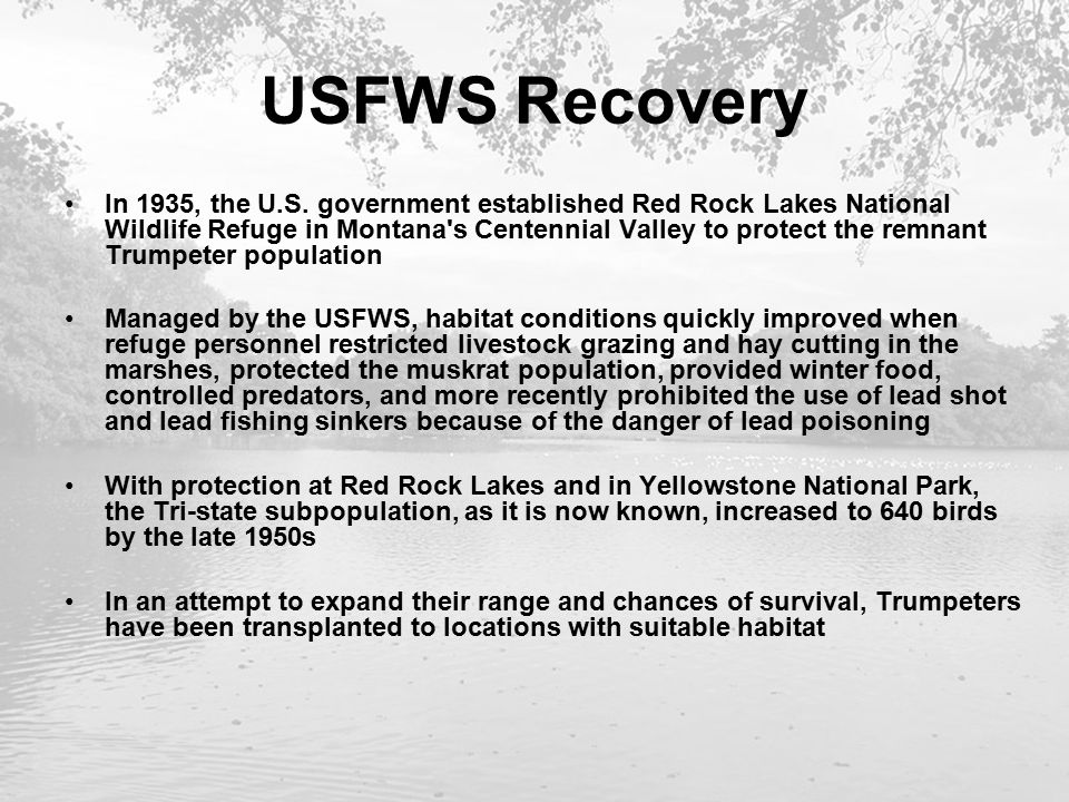 USFWS Recovery In 1935, the U.S.