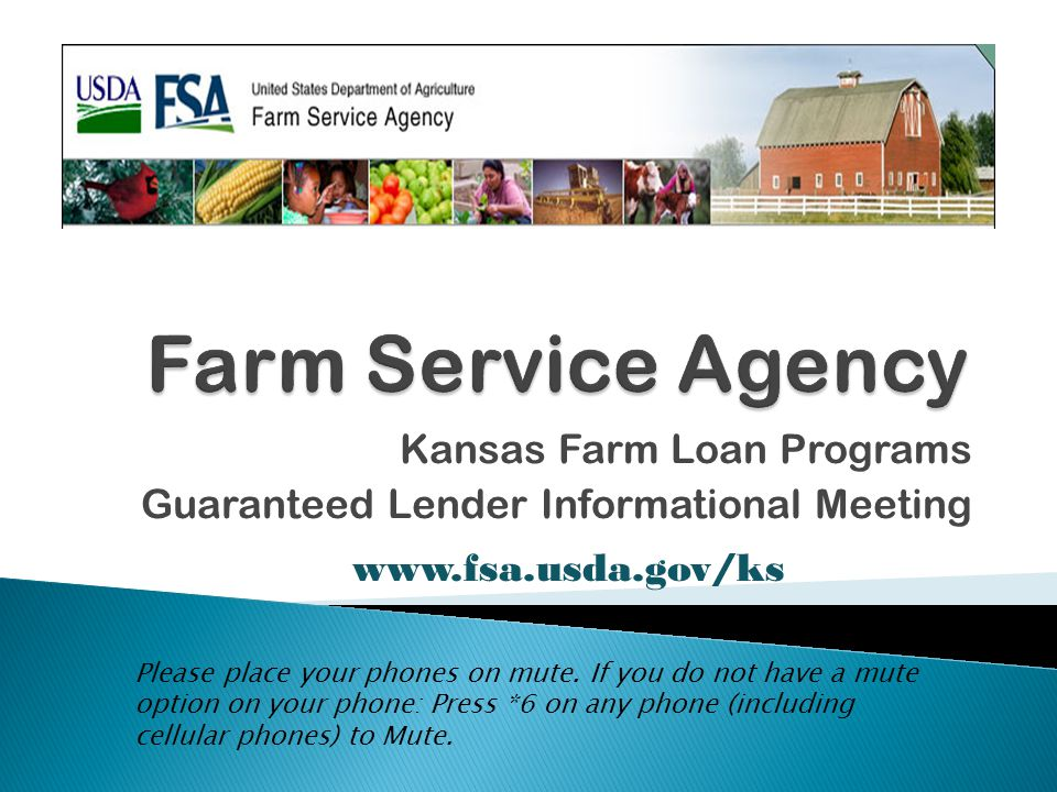 Shared Lien Positions Between FSA Guaranteed Loan and Lender's Non-Guaranteed Loan All guaranteed loans will be secured by the best lien obtainable provided that any chattel secured guaranteed loan must have a higher lien priority (including PMSI) than an unguaranteed loan secured by the same chattels and held by the same lender.