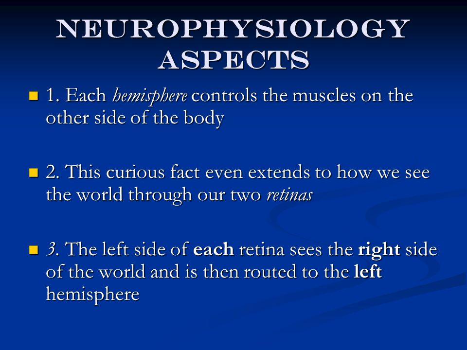Neurophys cont.4.