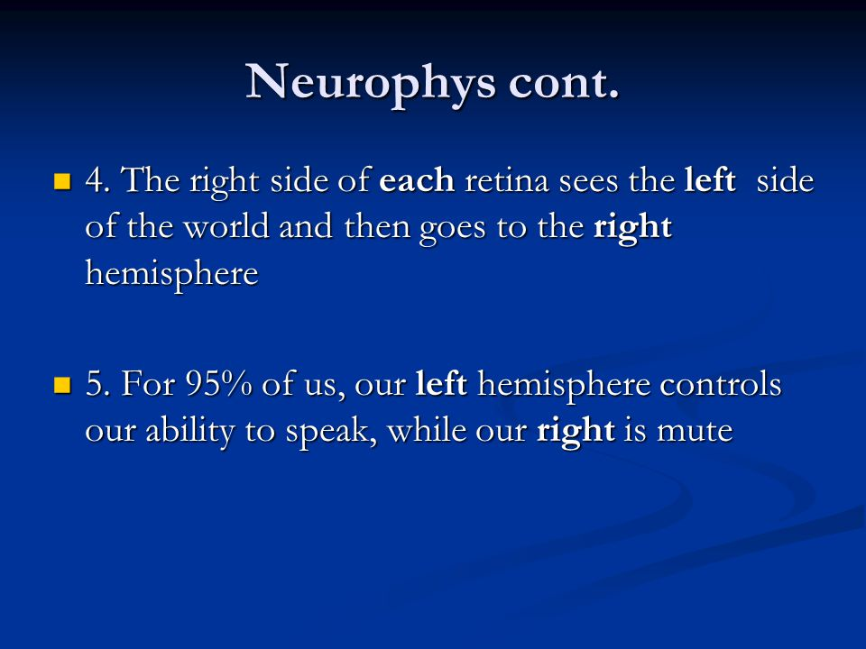 Neurophys cont. 4. The right side of each retina sees the left side of the world and then goes to the right hemisphere 4. The right side of each retin