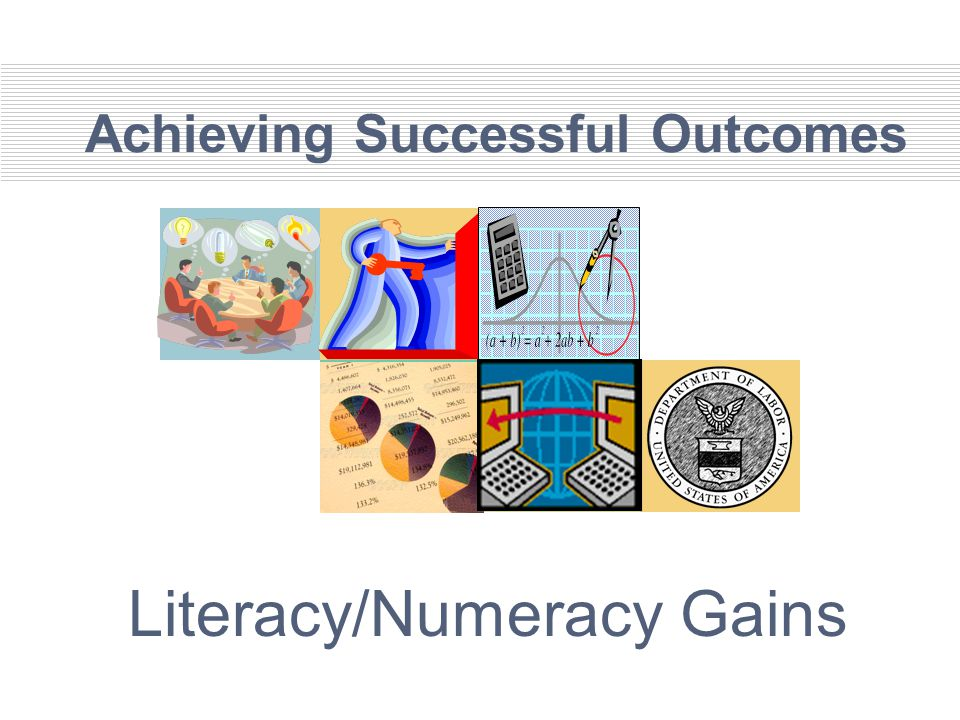 Achieving Successful Outcomes Literacy/Numeracy Gains