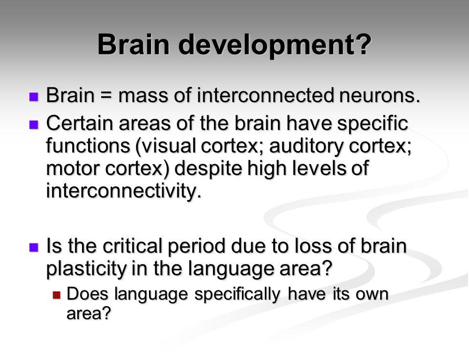 Brain development.Brain = mass of interconnected neurons.