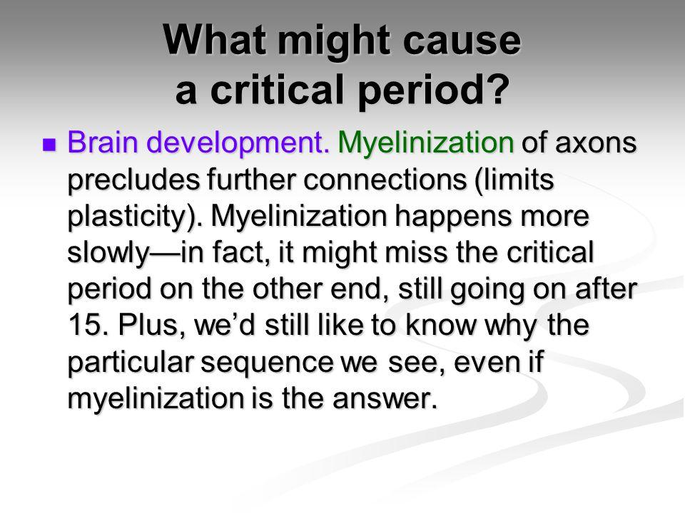 What might cause a critical period.Brain development.
