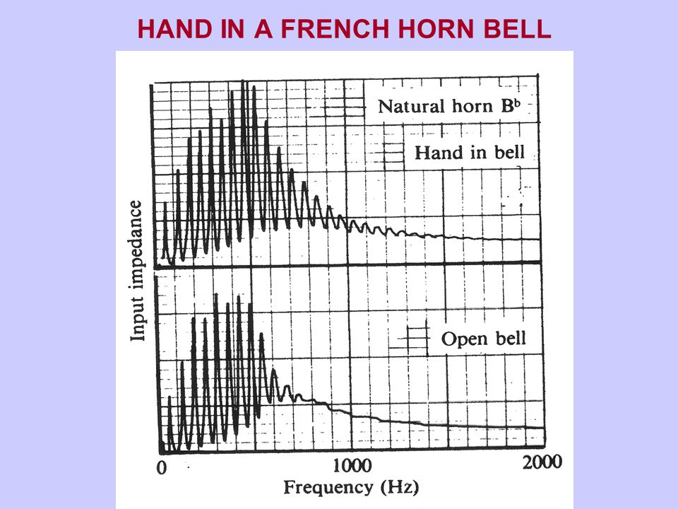 HAND IN A FRENCH HORN BELL