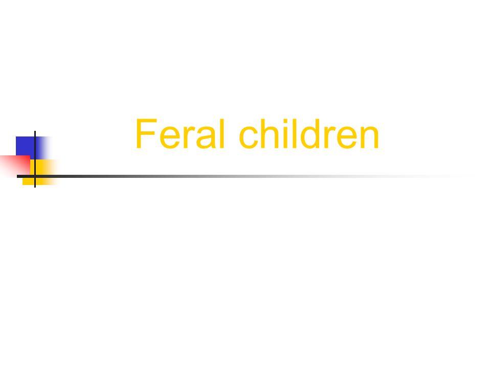 Outline o Definitions o Questions o The Critical Period Hypothesis o Some Cases of Feral Children o Timetable of Cases o Conclusion o Bibliography