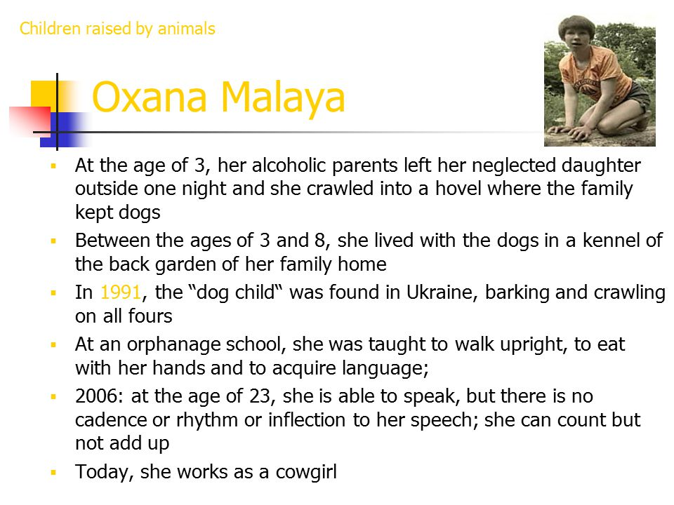 Oxana Malaya  At the age of 3, her alcoholic parents left her neglected daughter outside one night and she crawled into a hovel where the family kept dogs  Between the ages of 3 and 8, she lived with the dogs in a kennel of the back garden of her family home  In 1991, the dog child was found in Ukraine, barking and crawling on all fours  At an orphanage school, she was taught to walk upright, to eat with her hands and to acquire language;  2006: at the age of 23, she is able to speak, but there is no cadence or rhythm or inflection to her speech; she can count but not add up  Today, she works as a cowgirl Children raised by animals