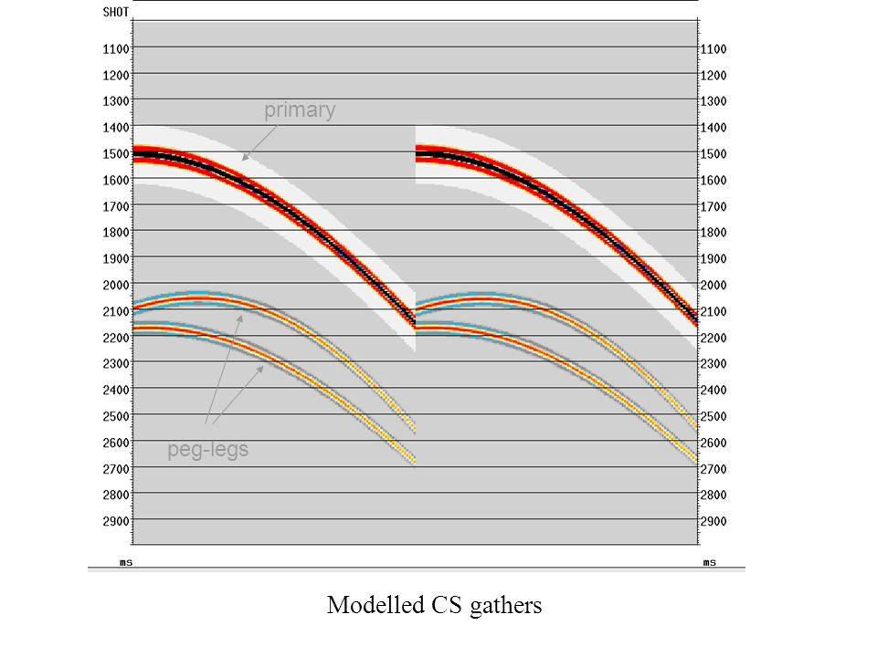 Modelled CS gathers primary peg-legs
