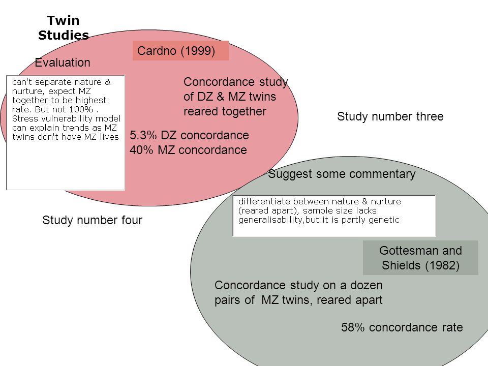 Twin Studies Gottesman and Shields (1982) Concordance study on a dozen pairs of MZ twins, reared apart 58% concordance rate Suggest some commentary Study number four Study number three Cardno (1999) Concordance study of DZ & MZ twins reared together 5.3% DZ concordance 40% MZ concordance Evaluation