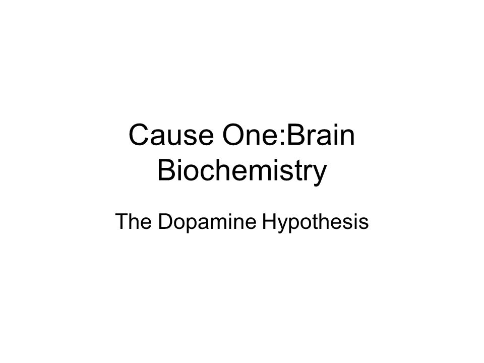 Cause One:Brain Biochemistry The Dopamine Hypothesis