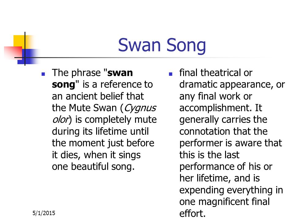 Swan Song The phrase swan song is a reference to an ancient belief that the Mute Swan (Cygnus olor) is completely mute during its lifetime until the moment just before it dies, when it sings one beautiful song.