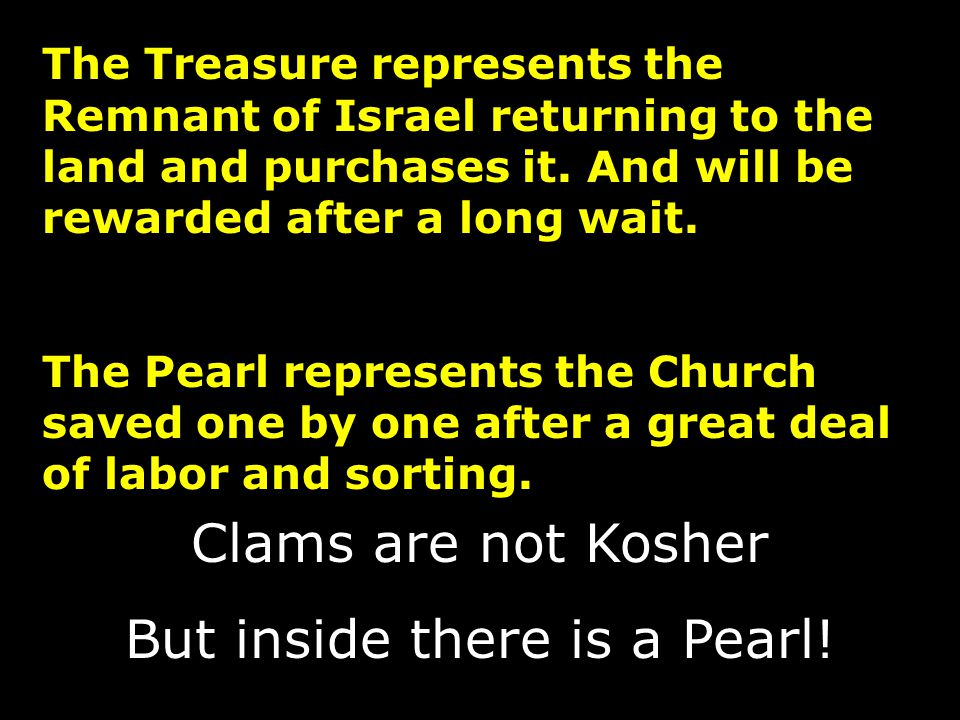 The Treasure represents the Remnant of Israel returning to the land and purchases it. And will be rewarded after a long wait. The Pearl represents the