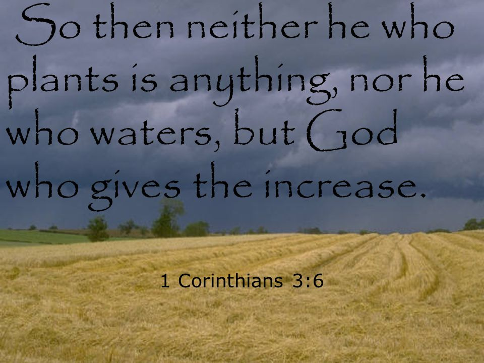 So then neither he who plants is anything, nor he who waters, but God who gives the increase. 1 Corinthians 3:6