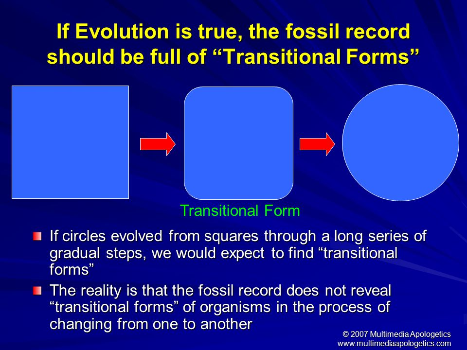 www.multimediaapologetics.com Evolutionary Conception Time CrocodilestoGentiles PrimordialSlime Darwin labored under the misconception of the Kantian